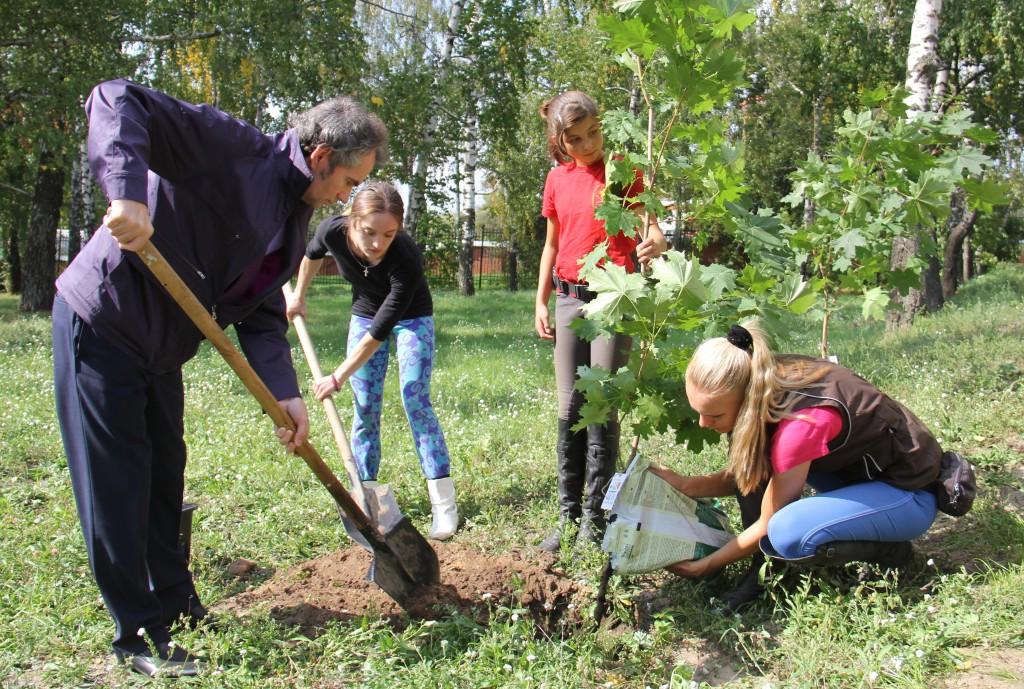 Посадить свое семейное дерев